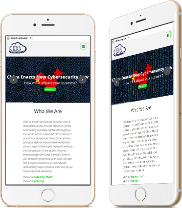 Website Design for CDS on mobile device