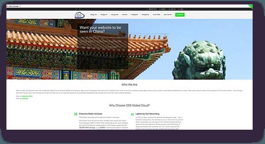 Website Design for CDS homepage screenshot