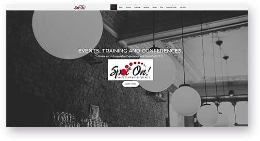 Website Design for Spot On homepage screenshot